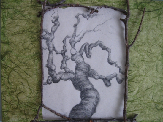 Chelsea Physic Garden (pencil)