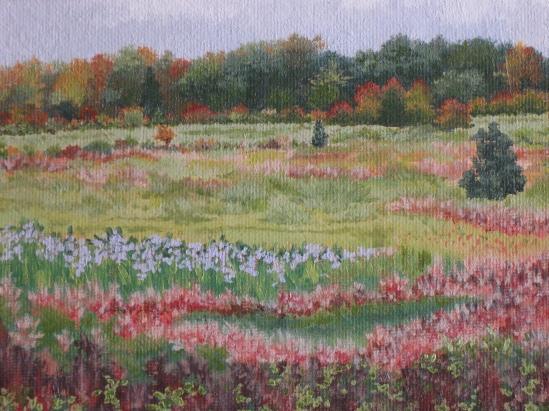 Essex Meadow, October (oil)
