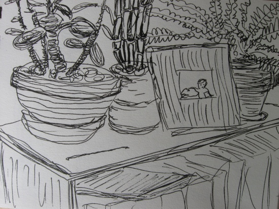 Plants on Shelf (pen)