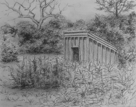 Field Near Brace Cove, E. Gloucester (charcoal pencil, 5 x 7)