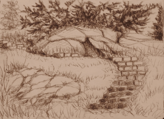 Ledge Road Steps (conte pencil, 5 x 7)