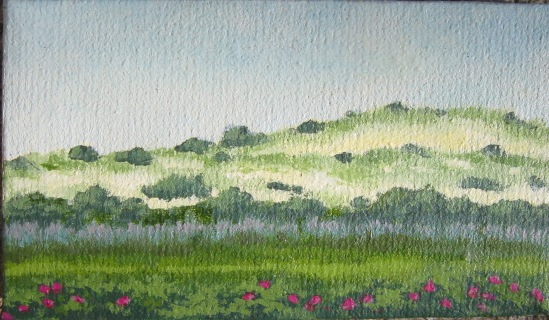 The last of the miniature canvases given to me by Susan, and she's getting it back covered in paint for her birthday. North Truro dunes, oil, 3 x 5 cm. Happy Birthday, Sioux!